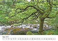 Stille Natur (Wandkalender 2019 DIN A4 quer) - Produktdetailbild 3