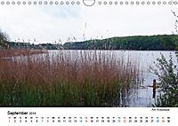 Stille Winkel im Hinterland - Mein Usedom (Wandkalender 2019 DIN A4 quer) - Produktdetailbild 9
