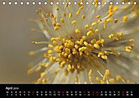 Stille Wunder der Natur (Tischkalender 2019 DIN A5 quer) - Produktdetailbild 4