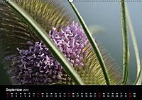 Stille Wunder der Natur (Wandkalender 2019 DIN A2 quer) - Produktdetailbild 9