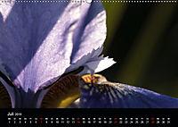 Stille Wunder der Natur (Wandkalender 2019 DIN A2 quer) - Produktdetailbild 7