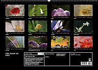 Stille Wunder der Natur (Wandkalender 2019 DIN A2 quer) - Produktdetailbild 13