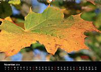 Stille Wunder der Natur (Wandkalender 2019 DIN A2 quer) - Produktdetailbild 11