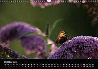 Stille Wunder der Natur (Wandkalender 2019 DIN A3 quer) - Produktdetailbild 10