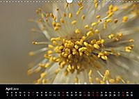 Stille Wunder der Natur (Wandkalender 2019 DIN A3 quer) - Produktdetailbild 4