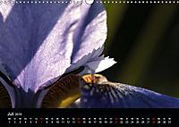 Stille Wunder der Natur (Wandkalender 2019 DIN A3 quer) - Produktdetailbild 7