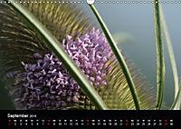 Stille Wunder der Natur (Wandkalender 2019 DIN A3 quer) - Produktdetailbild 9