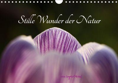 Stille Wunder der Natur (Wandkalender 2019 DIN A4 quer), Ingrid Michel