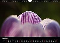 Stille Wunder der Natur (Wandkalender 2019 DIN A4 quer) - Produktdetailbild 3