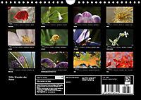Stille Wunder der Natur (Wandkalender 2019 DIN A4 quer) - Produktdetailbild 13
