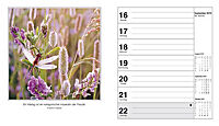 Stimmungen Fotokalender 2019 - Produktdetailbild 8