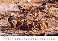 Stolz und Gehorsam. Impressionen von Soldaten im täglichen Einsatz (Wandkalender 2019 DIN A4 quer) - Produktdetailbild 3