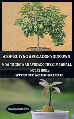 Stop Buying Avocados Grow Your Own: How to Grow an Avocados Tree in a Small Pot at Home, Charles Brown