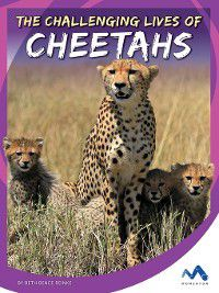Stories from the Wild Animal Kingdom: The Challenging Lives of Cheetahs, Beth Bence Reinke
