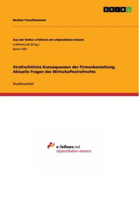 Strafrechtliche Konsequenzen der Firmenbestattung. Aktuelle Fragen des Wirtschaftsstrafrechts, Bastian Froschhammer