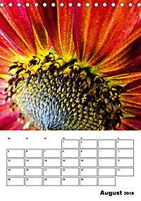Strahlende Sonnenblumen (Tischkalender 2019 DIN A5 hoch) - Produktdetailbild 8