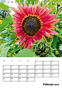 Strahlende Sonnenblumen (Tischkalender 2019 DIN A5 hoch) - Produktdetailbild 2