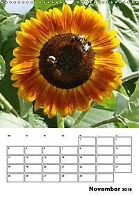 Strahlende Sonnenblumen (Wandkalender 2019 DIN A3 hoch) - Produktdetailbild 11