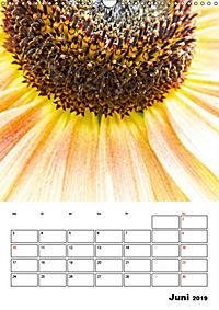 Strahlende Sonnenblumen (Wandkalender 2019 DIN A3 hoch) - Produktdetailbild 6