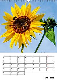 Strahlende Sonnenblumen (Wandkalender 2019 DIN A3 hoch) - Produktdetailbild 7