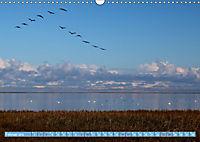 Stralsund und die Boddenlandschaft (Wandkalender 2019 DIN A3 quer) - Produktdetailbild 2