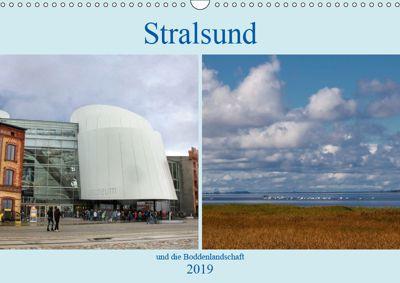 Stralsund und die Boddenlandschaft (Wandkalender 2019 DIN A3 quer), Brigitte Dürr