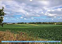 Stralsund und die Boddenlandschaft (Wandkalender 2019 DIN A3 quer) - Produktdetailbild 9