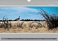 Strandblicke Borkum und Norderney (Wandkalender 2019 DIN A4 quer) - Produktdetailbild 9