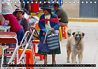 Straßenhunde 2019 (Tischkalender 2019 DIN A5 quer) - Produktdetailbild 4