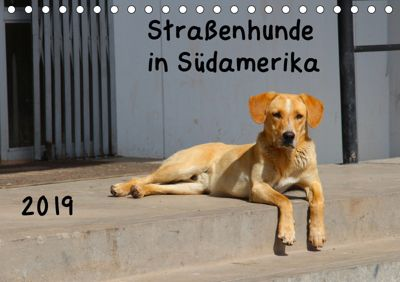 Straßenhunde 2019 (Tischkalender 2019 DIN A5 quer), Jochen Gerken