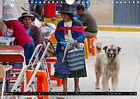 Strassenhunde 2019 (Wandkalender 2019 DIN A4 quer) - Produktdetailbild 4