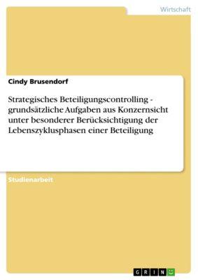 Strategisches Beteiligungscontrolling - grundsätzliche Aufgaben aus Konzernsicht unter besonderer Berücksichtigung der Lebenszyklusphasen einer Beteiligung, Cindy Brusendorf