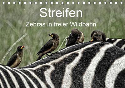 Streifen - Zebras in freier Wildbahn (Tischkalender 2019 DIN A5 quer), Susan Michel