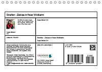 Streifen - Zebras in freier Wildbahn (Tischkalender 2019 DIN A5 quer) - Produktdetailbild 13