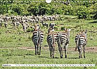 Streifen - Zebras in freier Wildbahn (Wandkalender 2019 DIN A4 quer) - Produktdetailbild 8