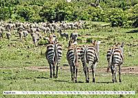 Streifen - Zebras in freier Wildbahn (Wandkalender 2019 DIN A2 quer) - Produktdetailbild 8