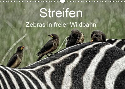 Streifen - Zebras in freier Wildbahn (Wandkalender 2019 DIN A3 quer), Susan Michel