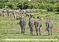 Streifen - Zebras in freier Wildbahn (Wandkalender 2019 DIN A3 quer) - Produktdetailbild 8