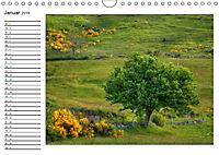 Streifzug durch die Provence (Wandkalender 2019 DIN A4 quer) - Produktdetailbild 1