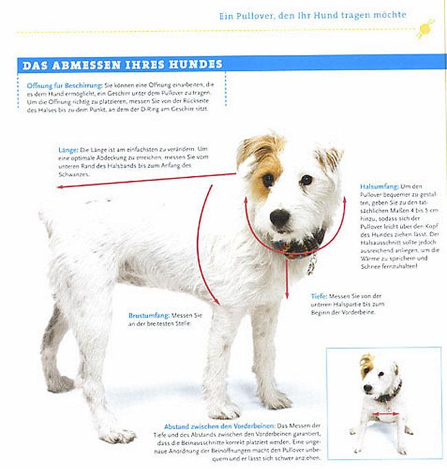 Strickideen für den Hund Buch portofrei bei Weltbild.de bestellen