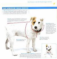 Strickideen für den Hund - Produktdetailbild 4