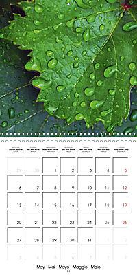 Structure of life (Wall Calendar 2019 300 × 300 mm Square) - Produktdetailbild 5