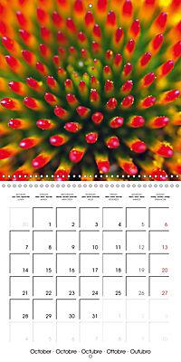Structure of life (Wall Calendar 2019 300 × 300 mm Square) - Produktdetailbild 10