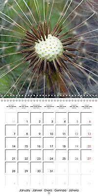 Structure of life (Wall Calendar 2019 300 × 300 mm Square) - Produktdetailbild 1