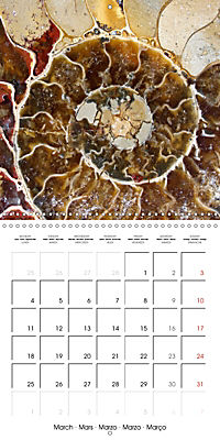 Structure of life (Wall Calendar 2019 300 × 300 mm Square) - Produktdetailbild 3