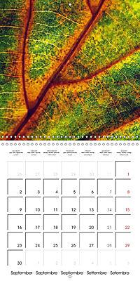 Structure of life (Wall Calendar 2019 300 × 300 mm Square) - Produktdetailbild 9