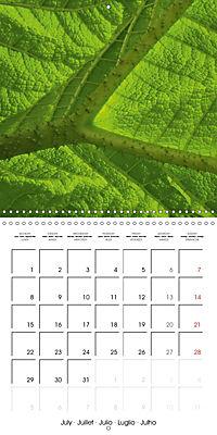 Structure of life (Wall Calendar 2019 300 × 300 mm Square) - Produktdetailbild 7