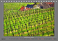 Strukturen im Weinbau (Tischkalender 2019 DIN A5 quer) - Produktdetailbild 4