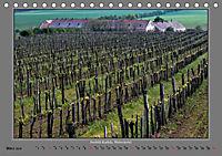Strukturen im Weinbau (Tischkalender 2019 DIN A5 quer) - Produktdetailbild 3