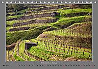 Strukturen im Weinbau (Tischkalender 2019 DIN A5 quer) - Produktdetailbild 5